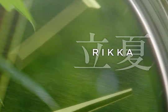 Rikka Watch Dial